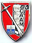 BCAAM